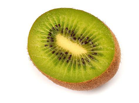 Bibit Buah Kiwi buah kiwi actinidia deliciosa
