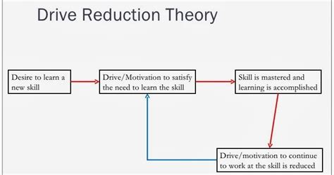 Drive Reduction Theory | as pe drive reduction theory and motivational strategies