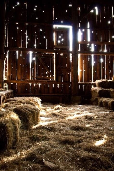 inside the barn images 01