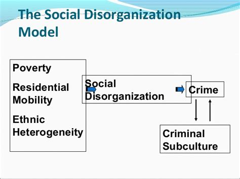 Social Theory Of Crime Essay by Social Disorganization Theory Essay Social Disorganization Theory Criminology Essay The Social