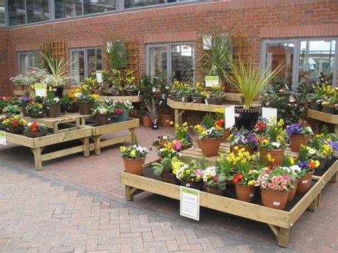 indoor plant displays picture  haskins garden centre