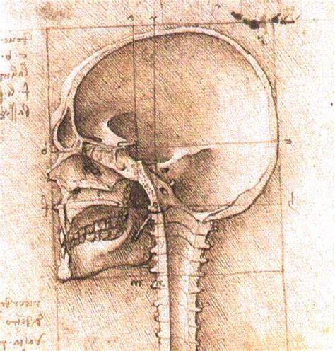biography of leonardo da vinci as a scientist da vinci the artist the inventor and the scientist