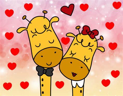 imagenes de jirafas enamoradas jirafa enamorada imagui