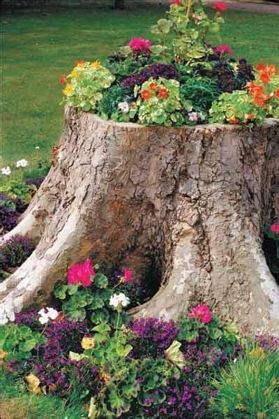 plantadores de arvores 25 melhores ideias de tocos de 225 rvores no pinterest