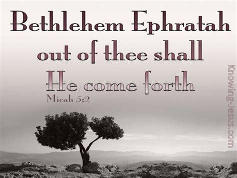 micah  verse   day