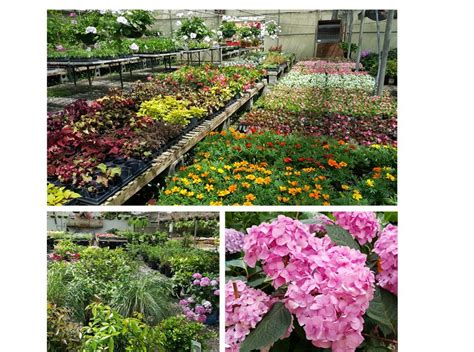 landscaping marietta ga landscape supply in marietta ga 28 images services hummel landscape supply company serving