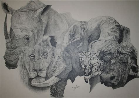 Big 5 Sketches lionaid image galleries for lionaid caigns
