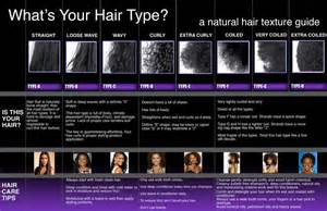 what type of hair can be used for crotchet braids african american hair texture chart hair can be very