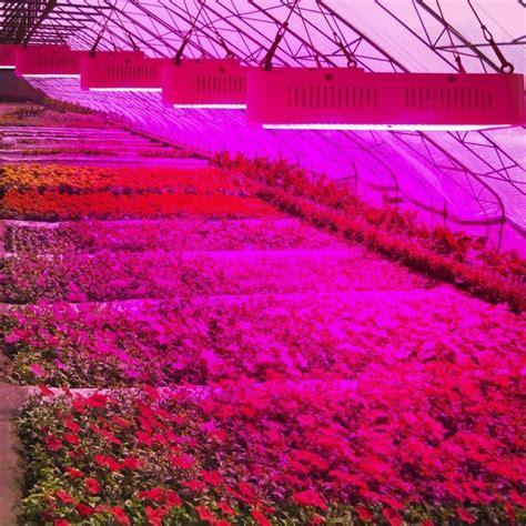 full spectrum     led grow light lamps
