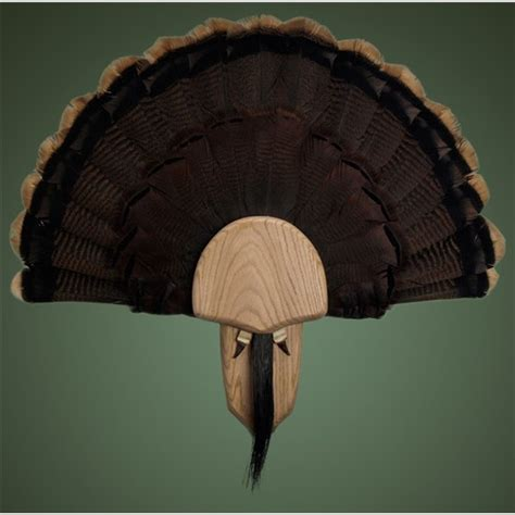 turkey fan mount kit solid oak turkey displa kit walnut hollow country
