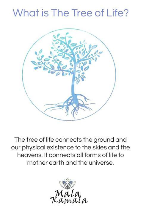 tree  life spiritual yoga symbols spiritual yoga