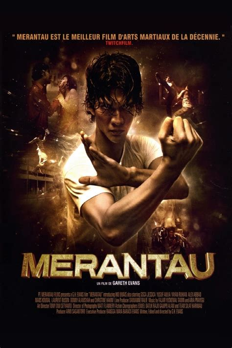 film it gareth evans retrospective part 2 merantau 2009 arm