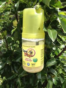 Fruit Flies Trap Insecticide Cera Fruit Fly Trap 600ml Dawsons Garden World