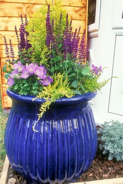 brilliant ideas  displaying plants  outdoor vases