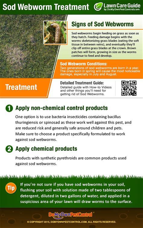 sod webworm treatment control how to get rid of sod