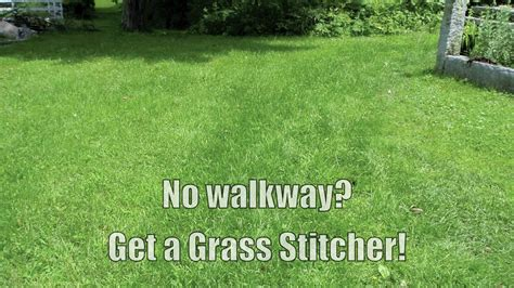 grass seed planter how to planting grass seed to repair worn lawn path