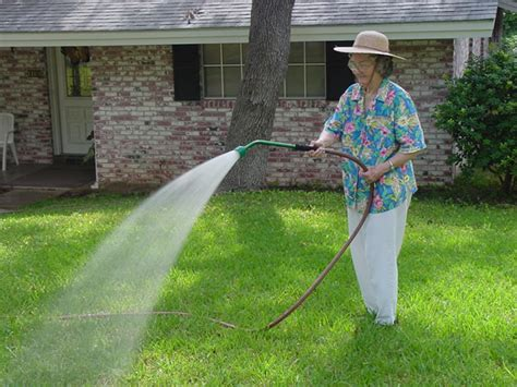 when to stop watering lawn 28 images lawn watering