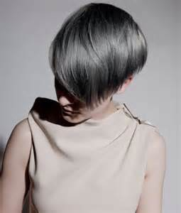ash gray hair color gray ash hair color trends 2015 brown hairs