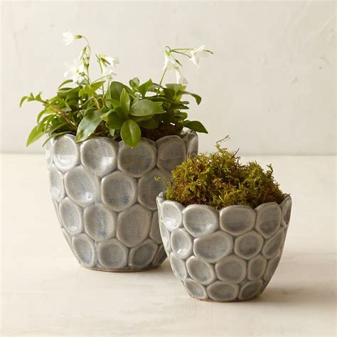Clay Planter Pots by Best 25 Pinch Pots Ideas On Clay Pinch Pots