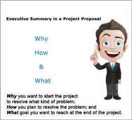 executive summary in a project funds for ngos