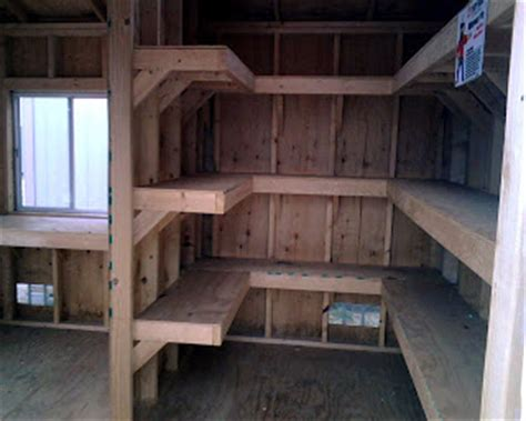 shed interior shed talk interior walls and shelves help organize
