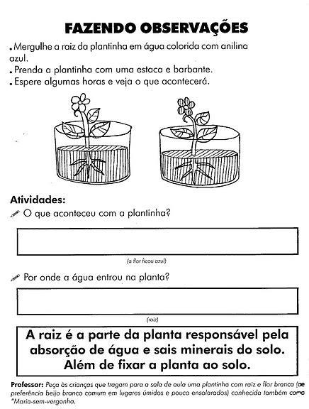 ENSINANDO E APRENDENDO COM A PROFª ANA ALICE: PARTES DAS