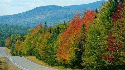 Search Maine Maine Holidays Find Cheap Maine Packages
