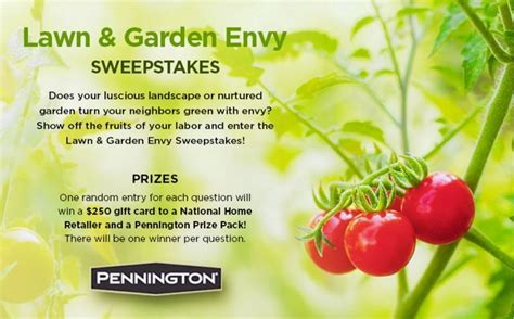 backyard sweepstakes backyard landscape sweepstakes izvipi com