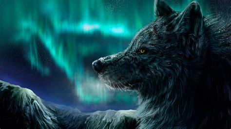 wallpaper wolf aurora polaris  art