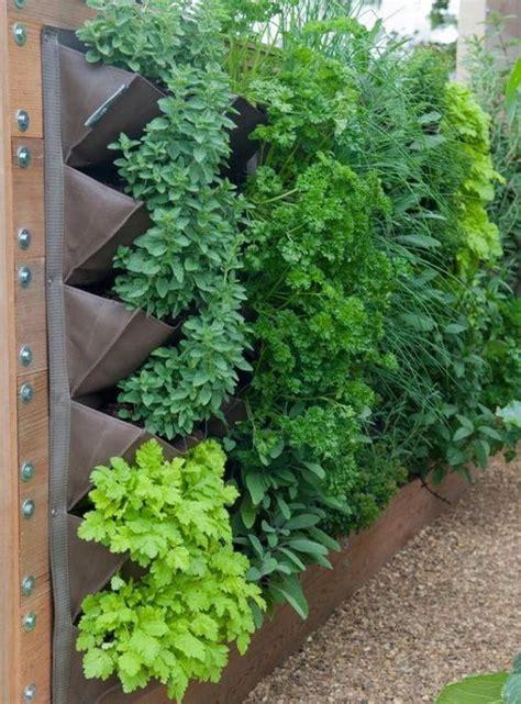 Best Vegetables For Vertical Gardening The World S Catalog Of Ideas