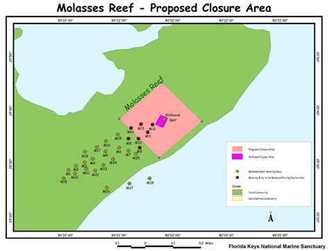 florida marine map maps of the wellwood coral reef restoration project