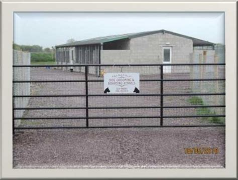 bed bath and biscuit a bed bath biscuit boarding kennels curraghleagh