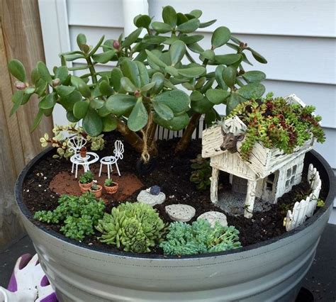miniature garden houses 2748 best mini garden succulents images on pinterest succulents succulent plants