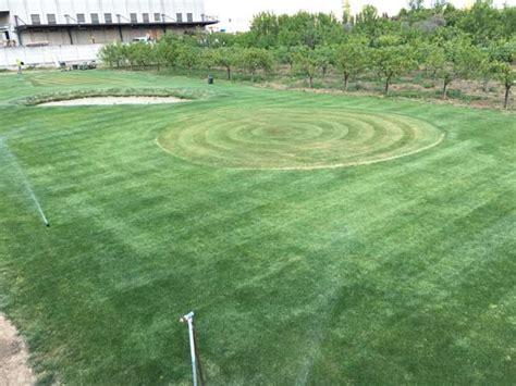 impianto irrigazione terrazzo impianto di irrigazione monza brianza sistemi a goccia