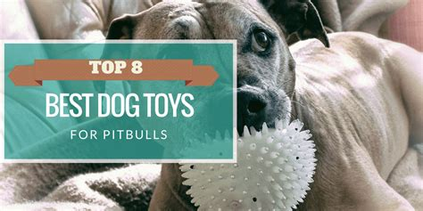 best toys for pitbull puppies indestructible toys for pit bulls wow