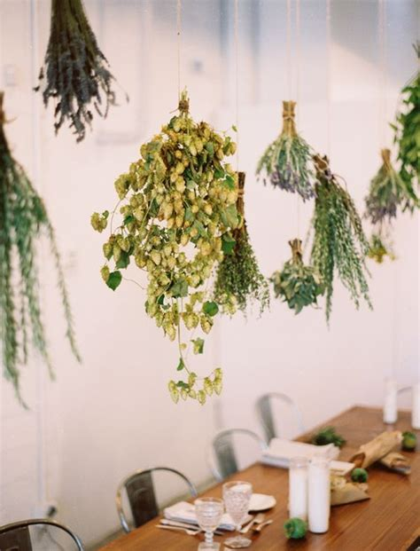 hanging herbs beautiful hanging upside down and hanging herbs on pinterest