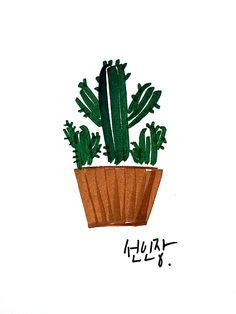 1000 images about 선인장 on pinterest cactus cactus print