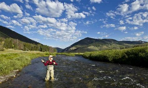fishing the gallatin river montana gallatin river montana fly fishing cing boating