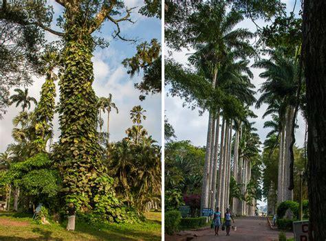 Aburi Botanical Gardens Aburi Botanical Gardens