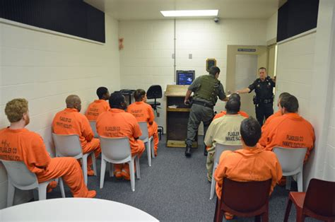 Flagler County Arrest Records County Inmate Search 2017 2018 Best Cars Reviews