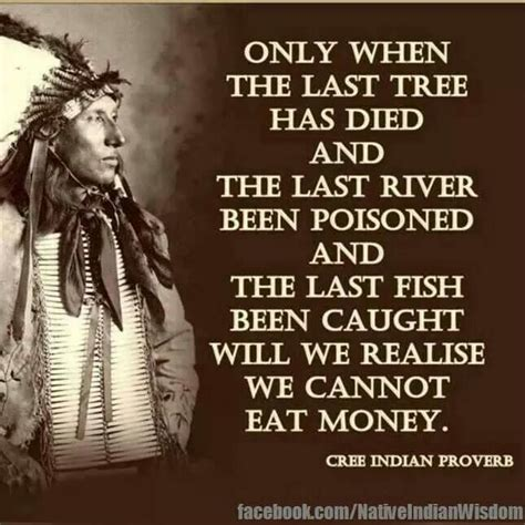 The Last American Quotes Cree Indian Proverb American Proverbs Sayings Quotes P