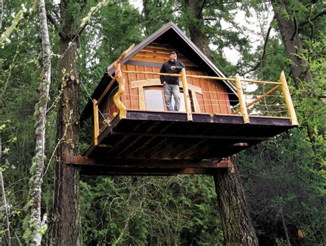 buy a tree house goat island tree house partners turn to kickstarter to raise funds local tdn com