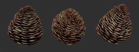 zbrush leaf tutorial creating forest grounds with zbrush tutorial by pierre