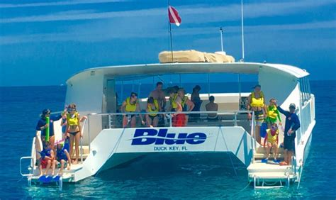 catamaran snorkel boat for sale florida keys snorkeling robbie s of islamorada