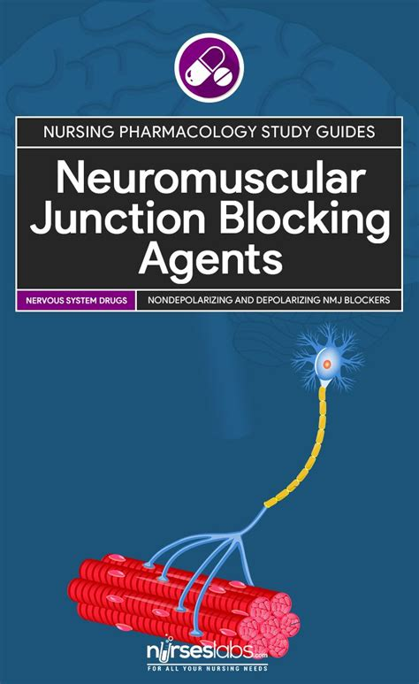 nerve vibration and excitation as agents in the treatment of functional disorder and organic disease classic reprint books best 25 neuromuscular junction ideas on