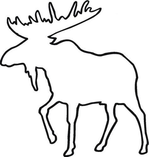 moose template moose outline julie forrest daye the world coloring