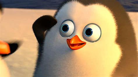 wann kommt die pinguine aus madagascar ins kino die pinguine aus madagaskar preview special die ersten 4