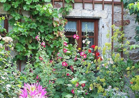 beste cottage garden pflanzen wunderbar gemusegarten anlegen pflanzplan bilder das