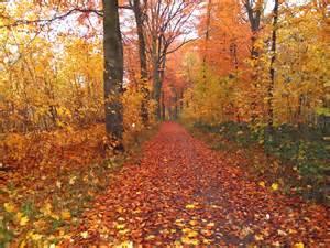 Herbst bilder autumn pics 20 of 20