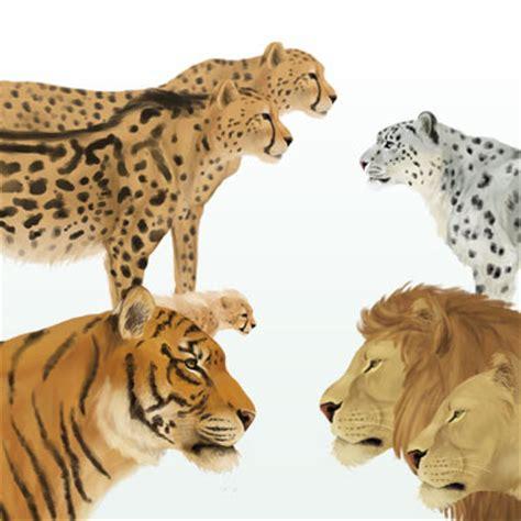 How to Draw Animals   Envato Tuts  Design & Illustration